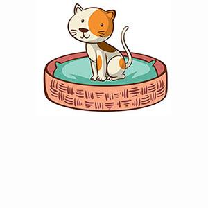 Сухой корм для котят отдельных пород