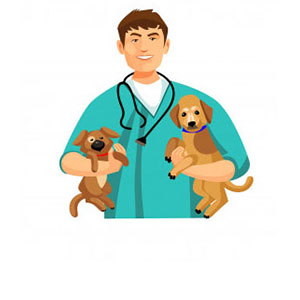 Ветпрепараты для собак
